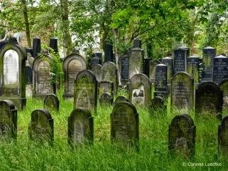 Friedhof_An_der_Strangriede_(C)_Corinna_Luedtke